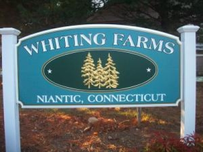 Whiting Farms Commons, Active Adult Community - Niantic, CT