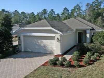Fabulous House in 55+ Active Adult Community Jacksonville, FL