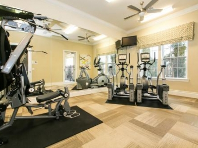 port richey senior singles Ranchside apartments in new port richey, fl has single story studios and one and two bedroom apartments available for rent excellent location close to everything, far from nothing.